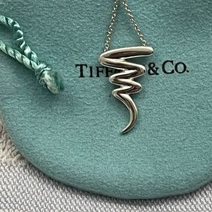 Tiffany & Co. Paloma Picasso's Scribble Necklace